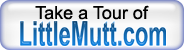 Take the LittleMutt Tour